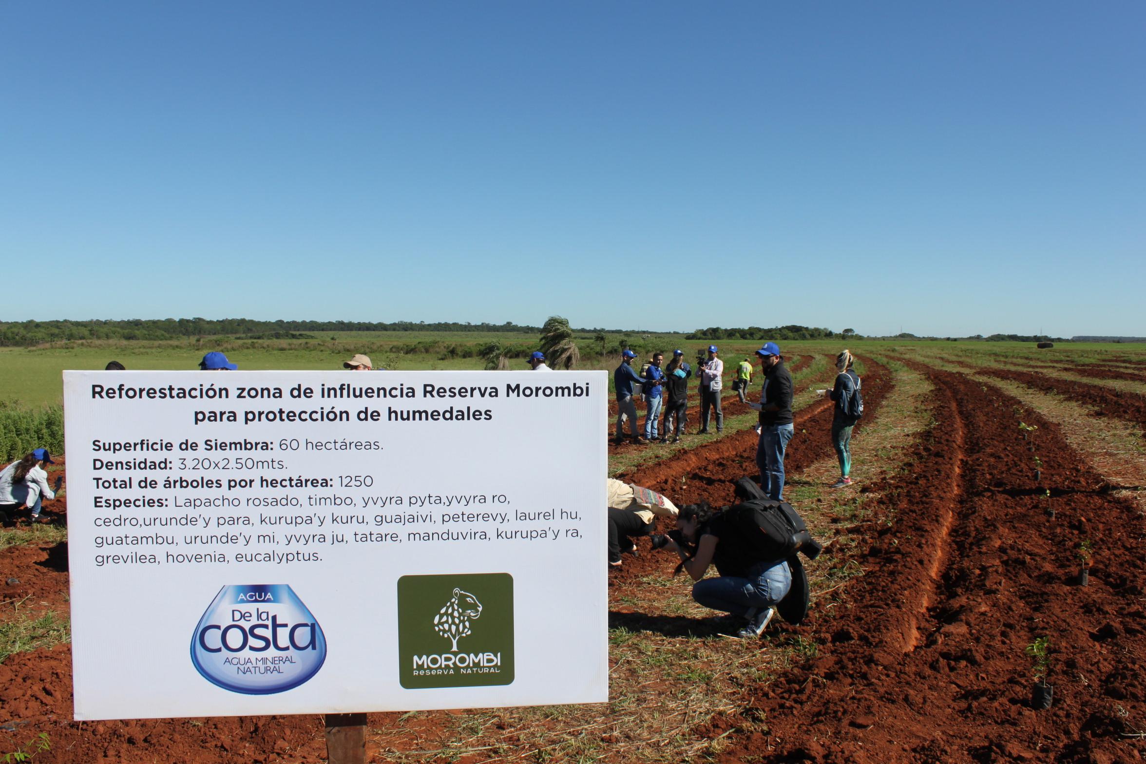 Agua de la Costa lanzó campaña de conservación de los bosques por tercer año consecutivo
